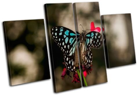 Butterfly Flowers Animals - 13-1165(00B)-MP17-LO